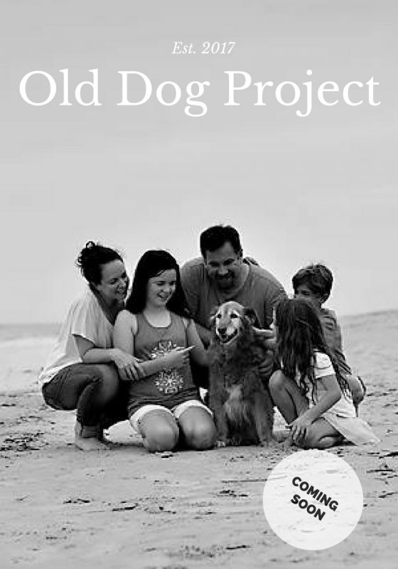 Old Dog Project